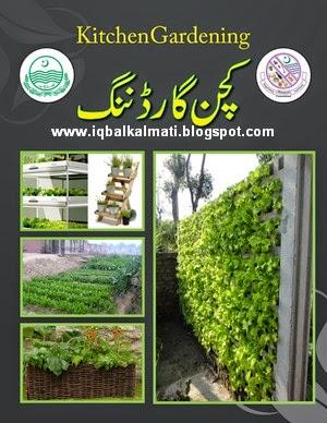 Kitchen Gardening In Urdu By Chaudhary Nadeem