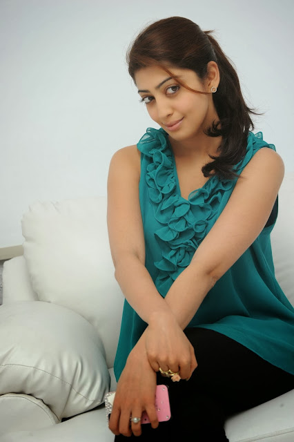 South Actress Pranitha Images