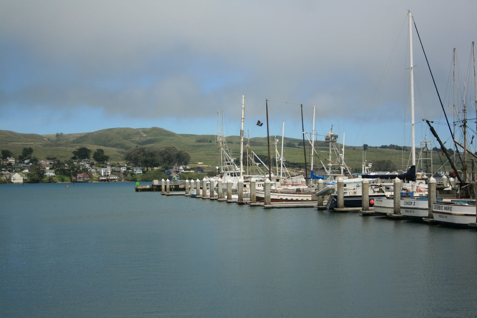 bodega bay Get directions, maps, and traffic for bodega bay, ca check flight prices and hotel availability for your visit.