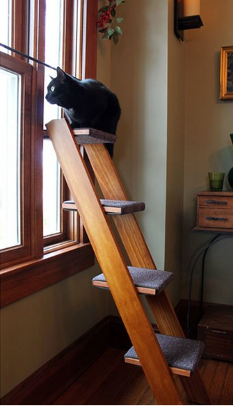 27 Brilliant Hacks Every Cat Owner Needs To Know