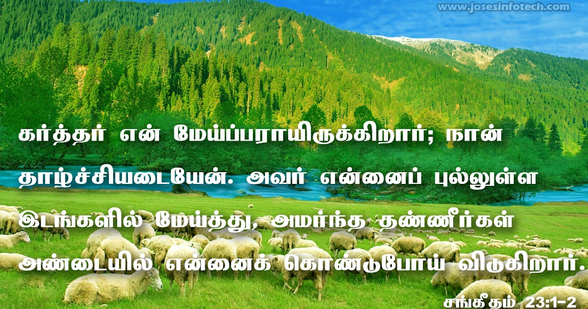 Tamil Bible பரிசுத்த வேதாகமம் (Holy Bible Tamil & …