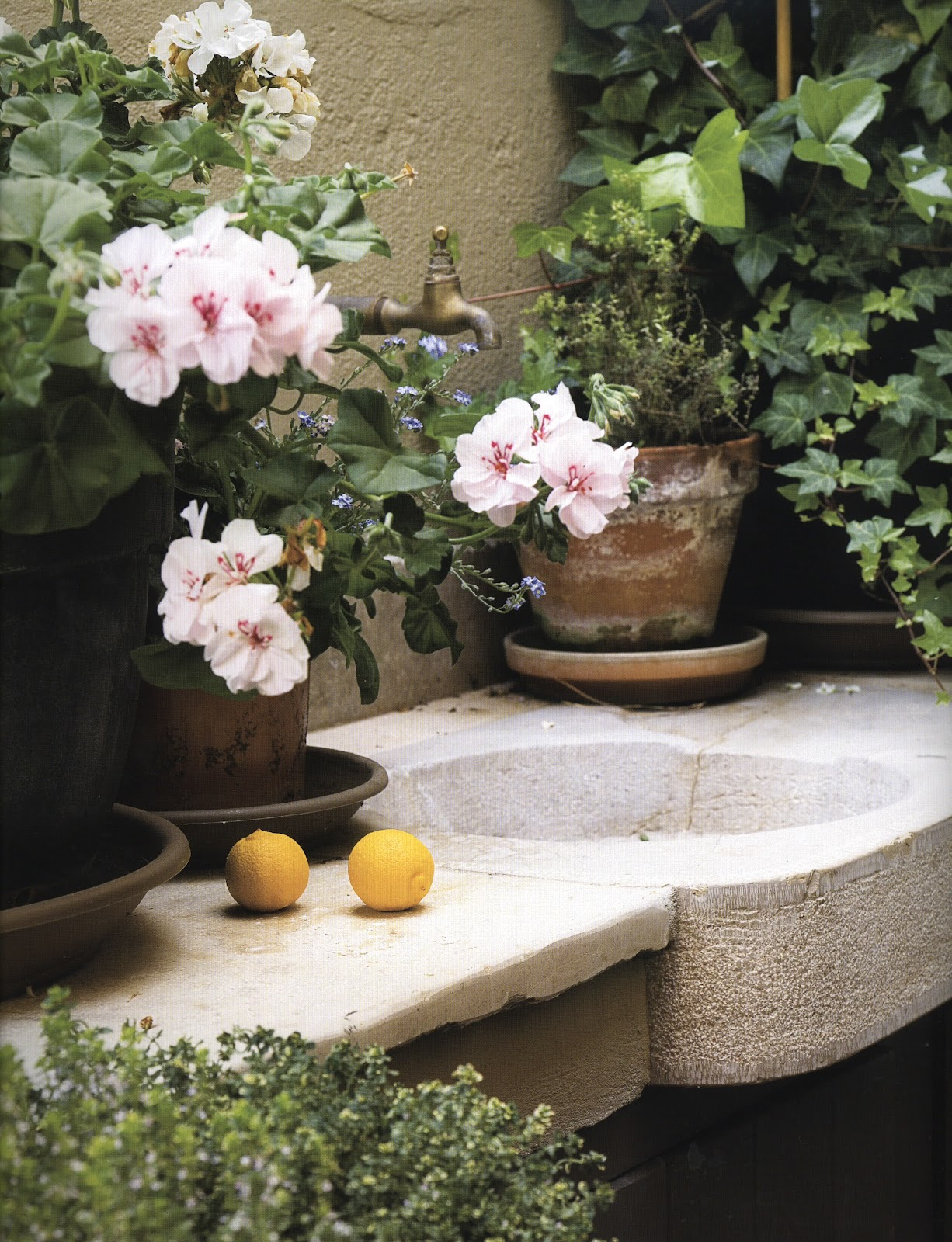 ... on Pinterest Outdoor Sinks, Garden Sink and Outdoor Garden Sink