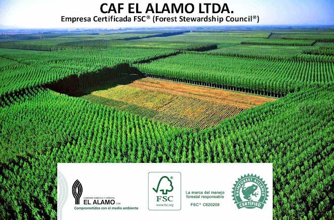 Compañía Agrícola y Forestal El Álamo Ltda.