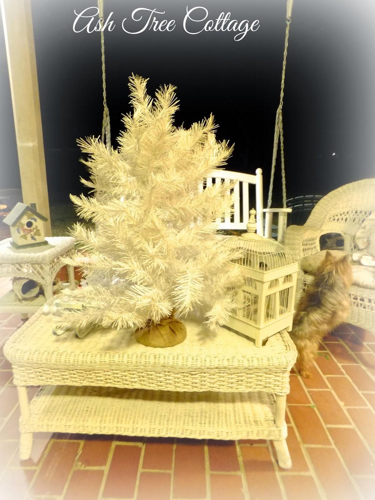 Ash Tree Cottage: December 2013