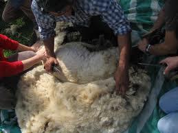 Que significa soñar con lana