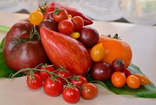 з дослідів і відгуків овочівників-городників, можна скласти невеликий рейтинг найкращих сортів помідорів.