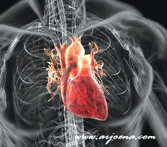 Ciri Penyakit Jantung