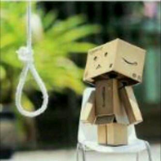 Download image Pictures Of Boneka Danbo Sedang Galau Wartaspot PC ...