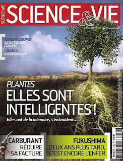 Magazine : SCIENCE&VIE N°1146 - Mars 2013