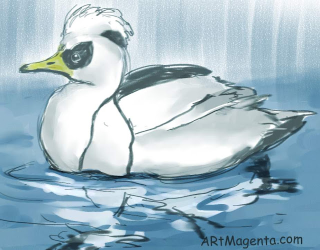 Smew is a bird drawing by artist and illustrator Artmagenta