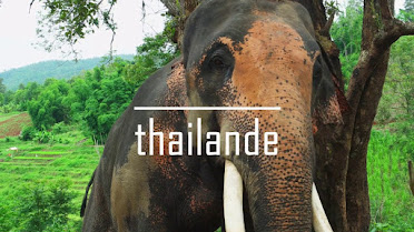 Thailand travel 2017
