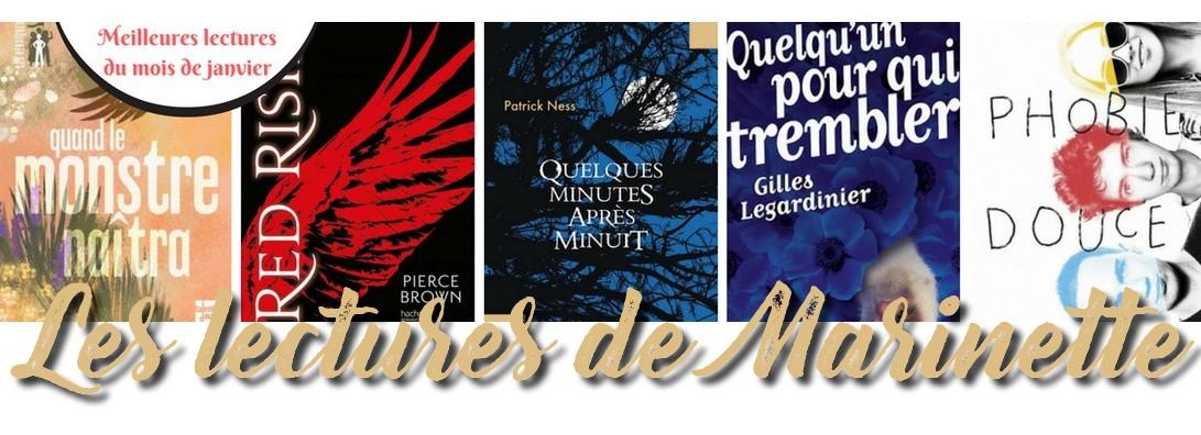 Les lectures de Marinette