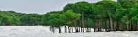 Evaluación cumplimiento recomendaciones Informe UNESCO/RAMSAR/IUCN