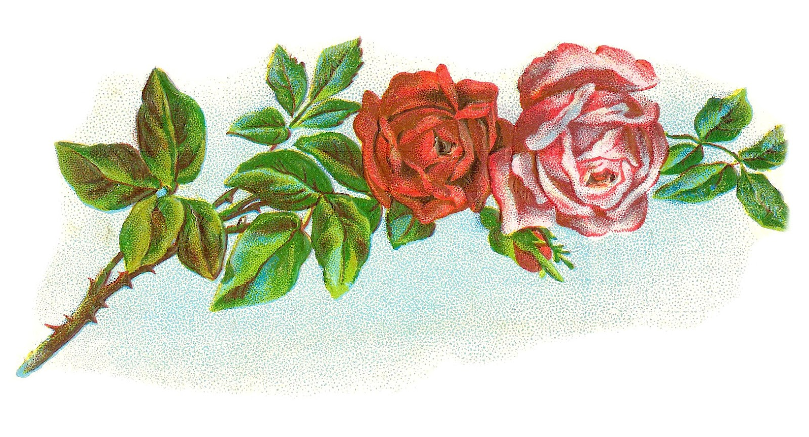 Vintage Flower Clip Art  Vintage Rose Graphic of Red and Pink Rose on    Vintage Rose Clip Art