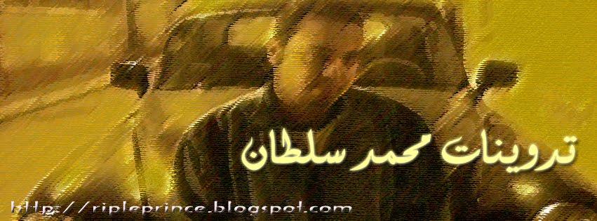 الامير الثائر (محمد سلطان)