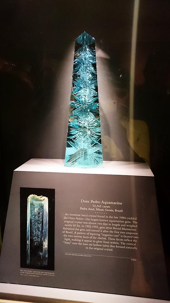 Museu Nacional da Historia Natural- DC