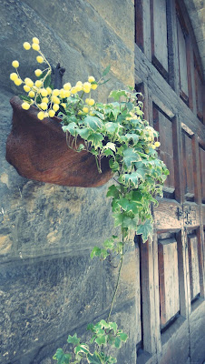 Flower pot with yellow flowers in Tuscany