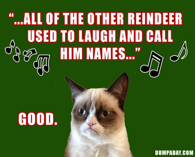 Christmas Season: un happy cat christmas