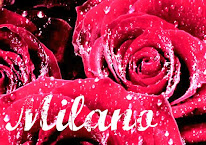RIPRENDONO i percorsi di Flamenco 2019/2020 !!