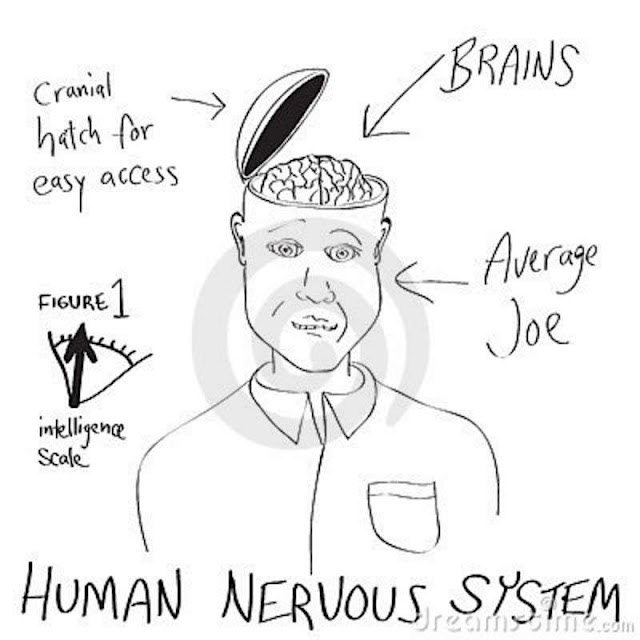 Brain Cartoon4