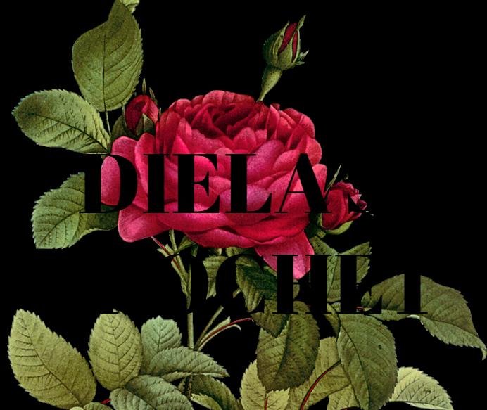 DIELA'S CROCHET