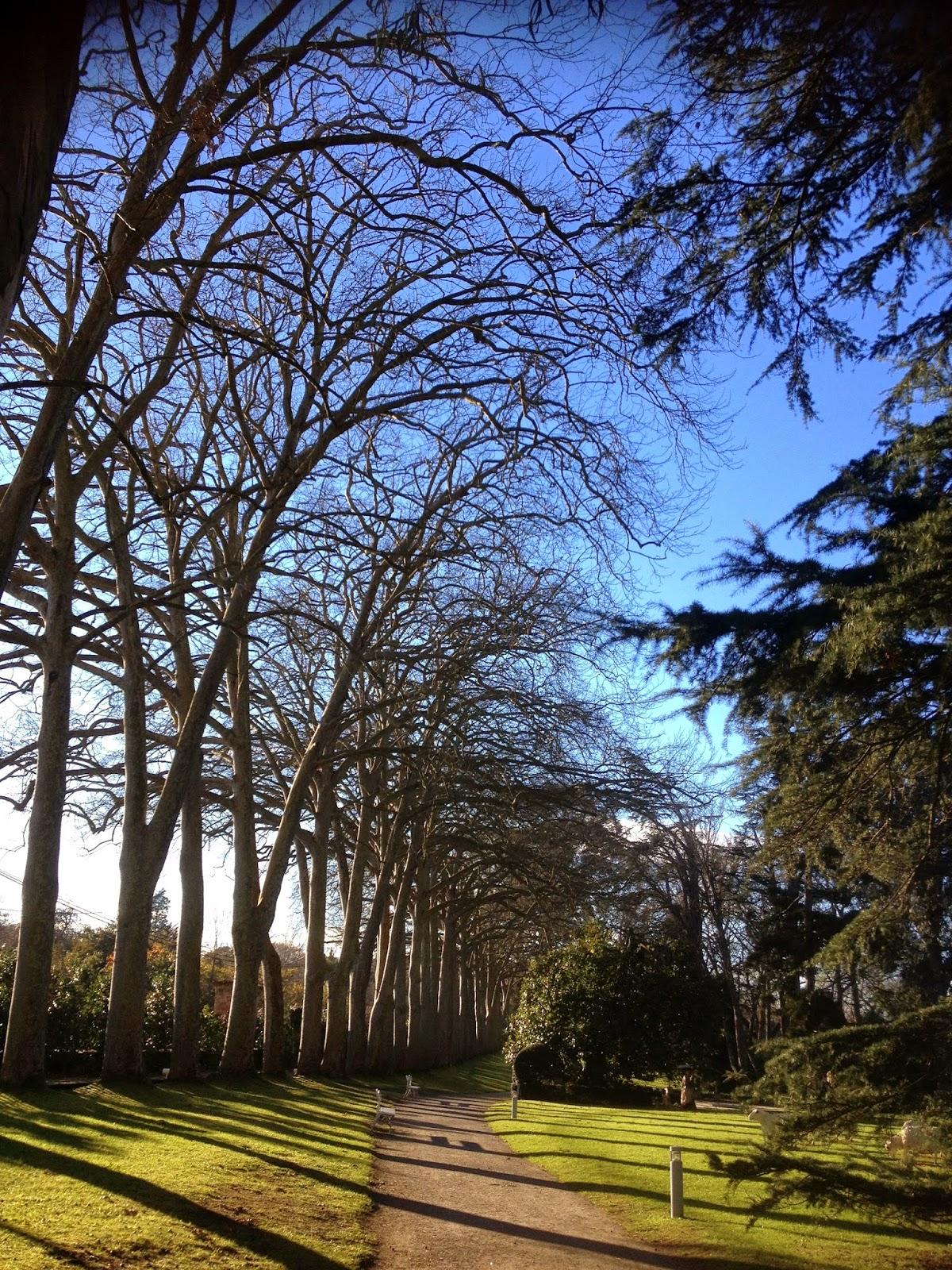 Asturias con ni os visitas guiadas tem ticas con la for Precio de entrada al jardin botanico