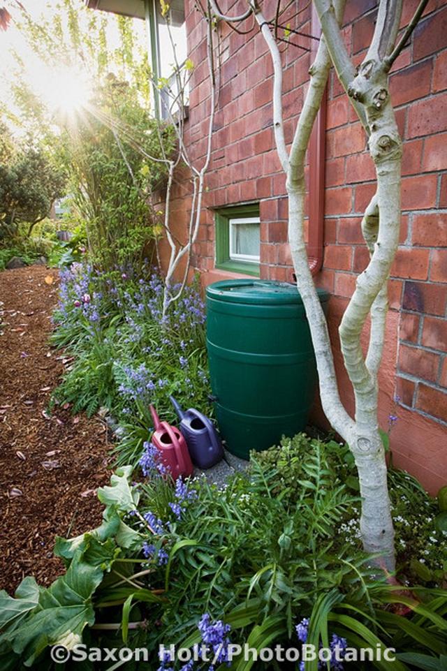 Cisterna prática para captação de água da chuva