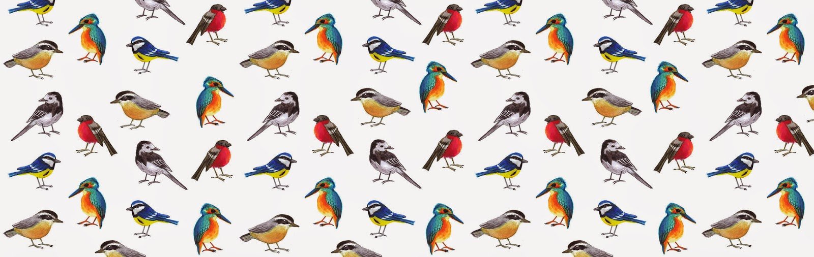 British birds - Jen Haugan Animation & Illustration