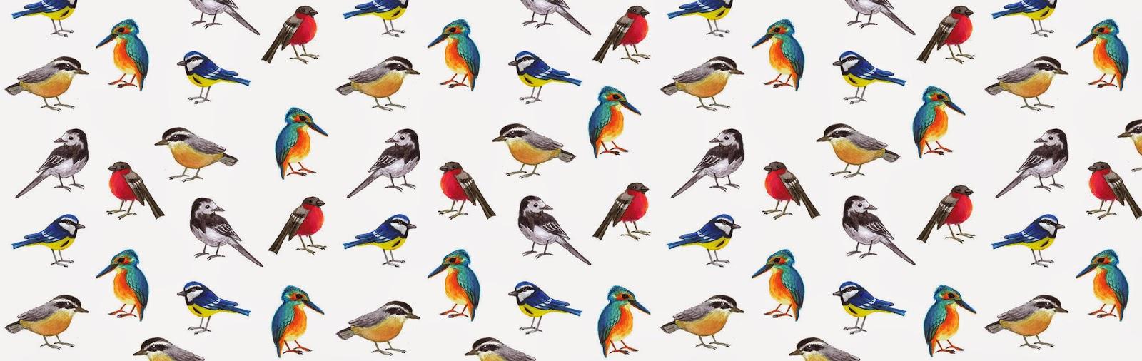 British birds - Jen Haugan Animation & Illustration