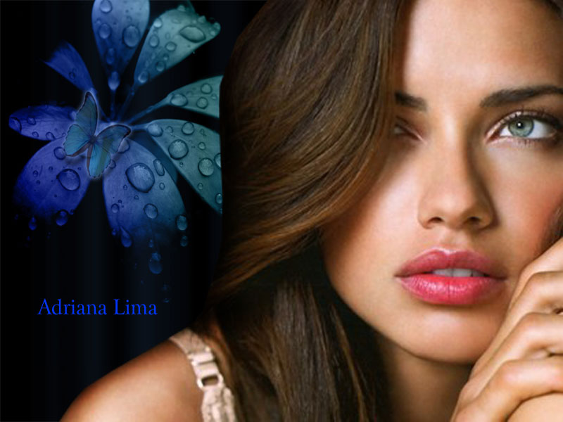 Adriana Lima was born on 12 june 1981 in Bahia Brazil. Adriana Lima is a Brazilian supermodel and Hollywood Actress. Check out Adriana Lima Wallpapers 2012. These Adriana Lima Wallpapers are available in popular screen resolution 800x600. Download these Adriana Lima Wallpaper collection in our gallery section and sharing these Adriana Lima Wallpapers with your friends on facebook, twitter, google buzz or share it where you wished to share these Wallpapers.