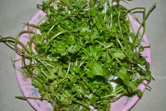 Corriander-Leaves-+-South-Indian-dishes