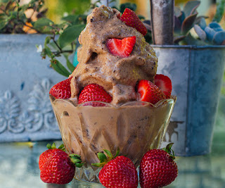 Chocolate Peanut Butter Shakeology Ice Cream, healthy dessert, www.HealthyFitFocused.com, Julie Little
