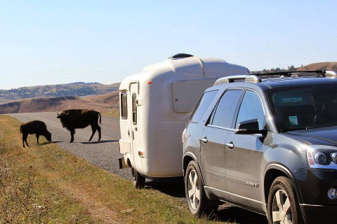 U-haul (uhaul) CT13 Camper with wildlife in Custer State Park, SD