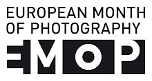 European Logo