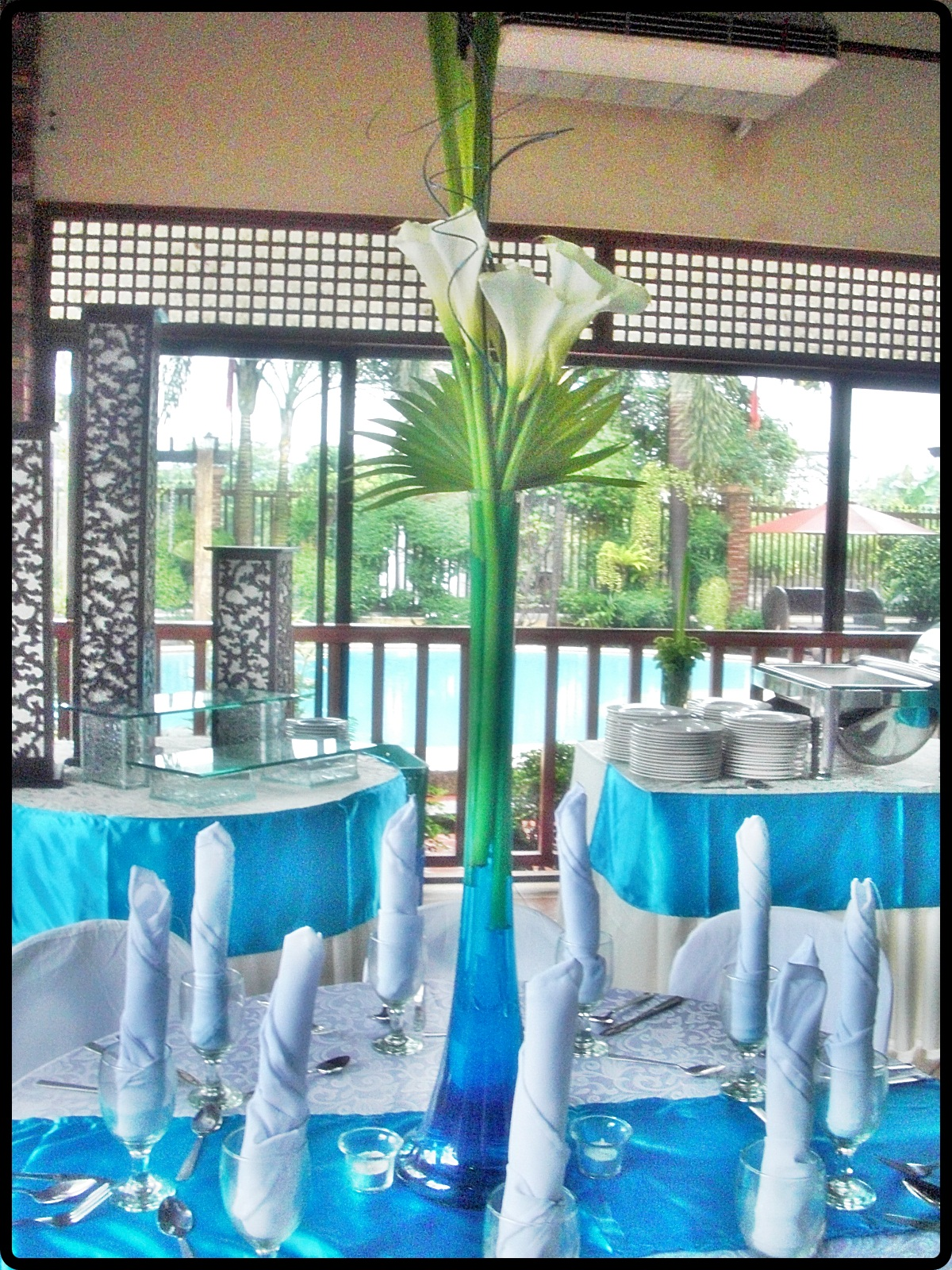 Weddings by Dexianic Foodservices: Aqua Blue and Green Wedding Reception