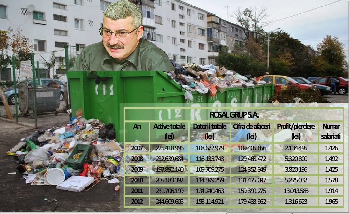 Situații financiare Rosal 2007 2008 2009 2010 2011 2012