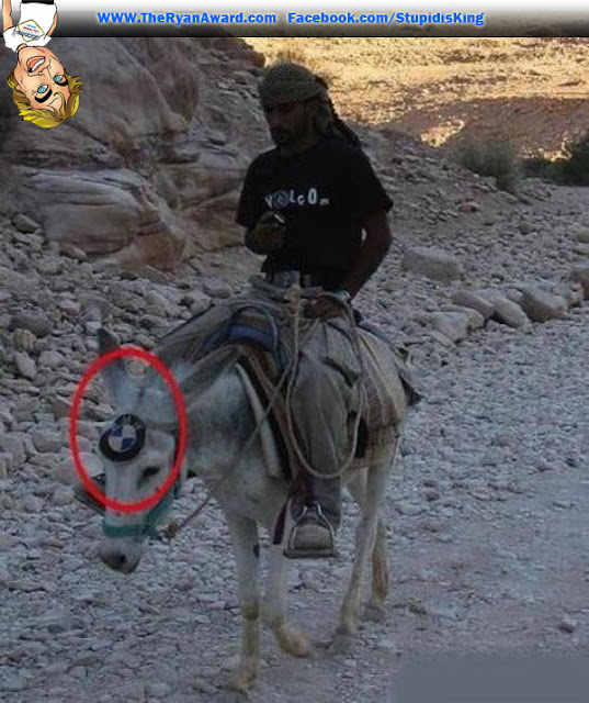 Hoggie style BMW - funny picture