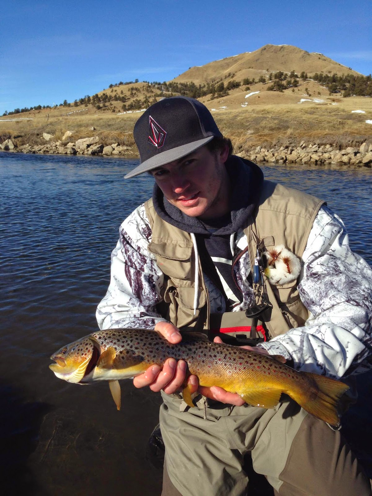 Addictive angling colorado colorado fly fishing trip for Colorado fly fishing trips