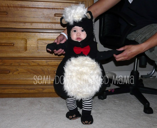 Halloween is mommyu0027s chance to dress her offspring up in adorable sometimes amsuing often embarrassing costumes just for fabulous pictures she can use in ...  sc 1 st  Confessions of a Semi-Domesticated Mama & SNEAK PEAK OF HALLOWEEN