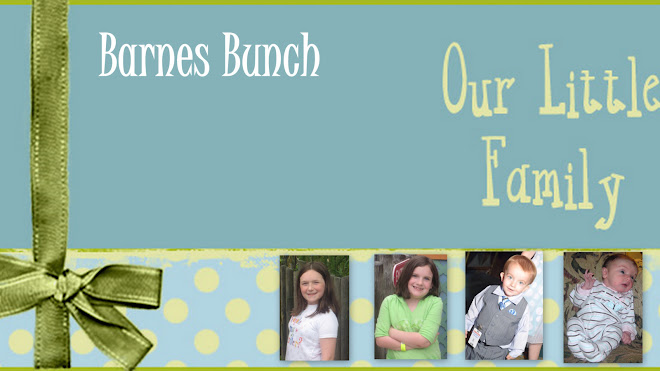 Barnes Bunch