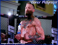 Image of Conor McGregor in the octogon