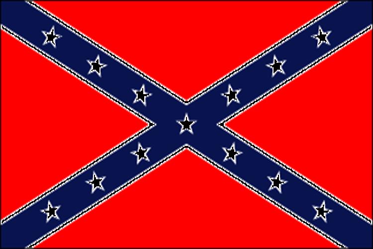 Raise A Flag - I Never You Never