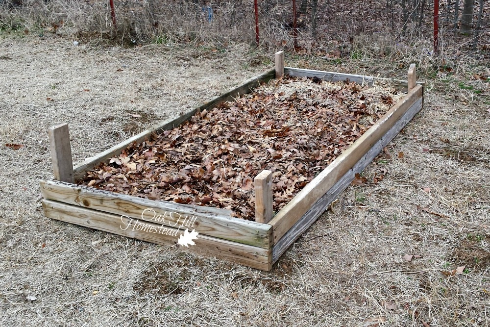 The garden expansion oak hill homestead for How to fill a raised garden bed