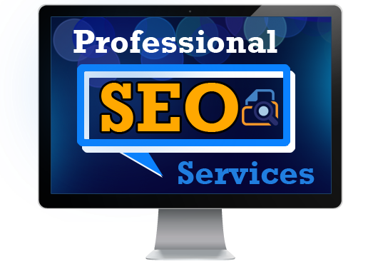 Image result for professional SEO service