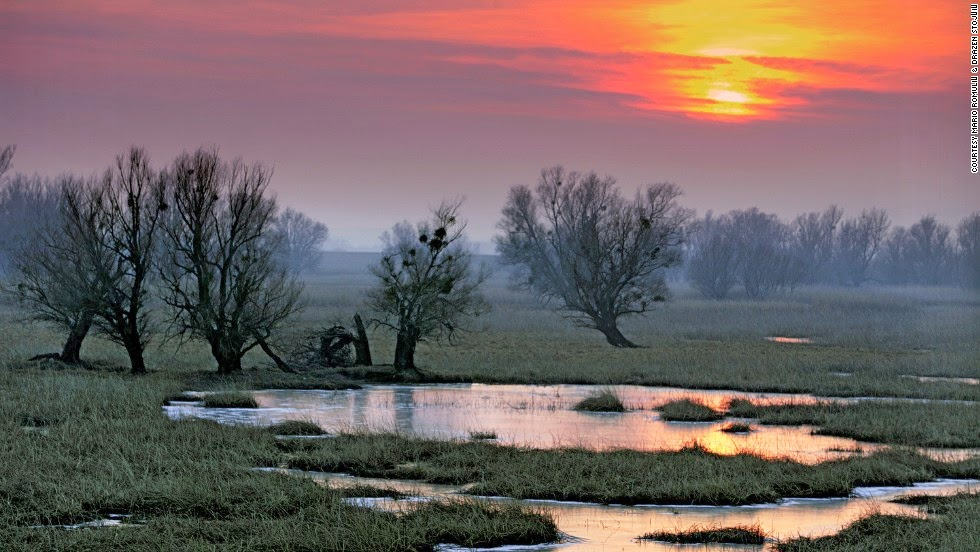 Kopački rit Nature Park, Slavonia