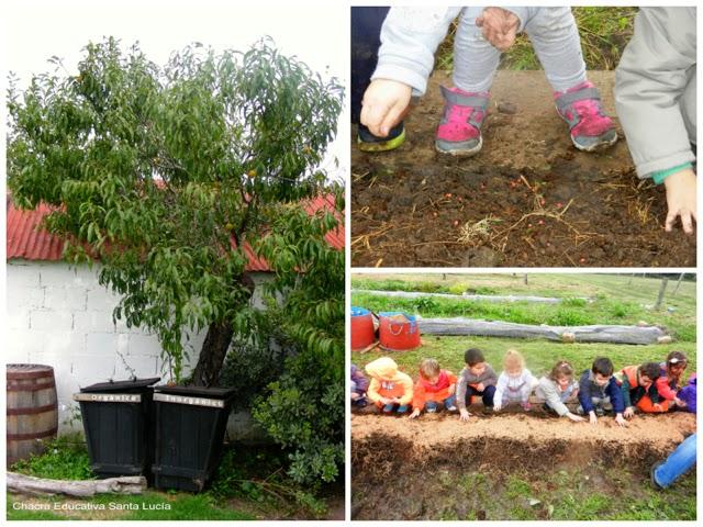 Clasificación de residuos - siembra - Chacra Educativa Sta Lucía