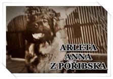 http://hairyhope.blogspot.cz/p/arleta-anna-z-poribska.html