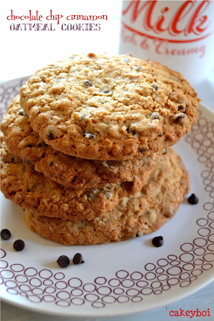 chocolate chip cinnamon oatmeal cookies