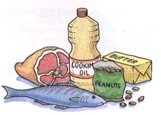 makanan sumber lemak