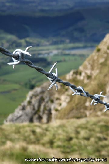Te Mata Peak, Tukituki Valley and a bit of barbed-wire fence photograph